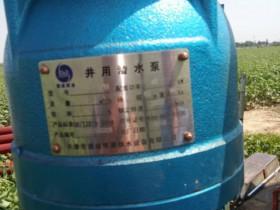 天津潜成泵业200QJ80-121农田灌溉下井