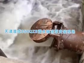 350QZB潜水轴流泵安装现场,天津潜成潜水轴流泵500立方每小时起步