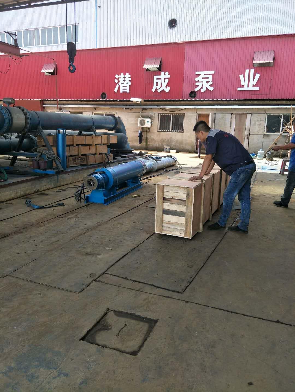 300QJW320-70-110KW卧式潜水泵发往江西第1张-潜水电机-潜水电泵-高压潜水电机-天津潜成泵业