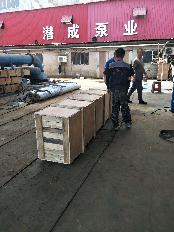 300QJW320-70-110KW卧式潜水泵发往江西第4张-潜水电机-潜水电泵-高压潜水电机-天津潜成泵业