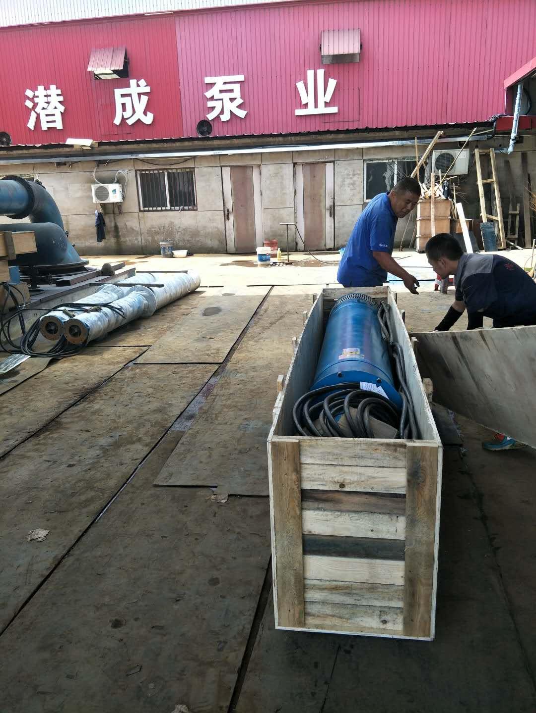 300QJW320-70-110KW卧式潜水泵发往江西第3张-潜水电机-潜水电泵-高压潜水电机-天津潜成泵业