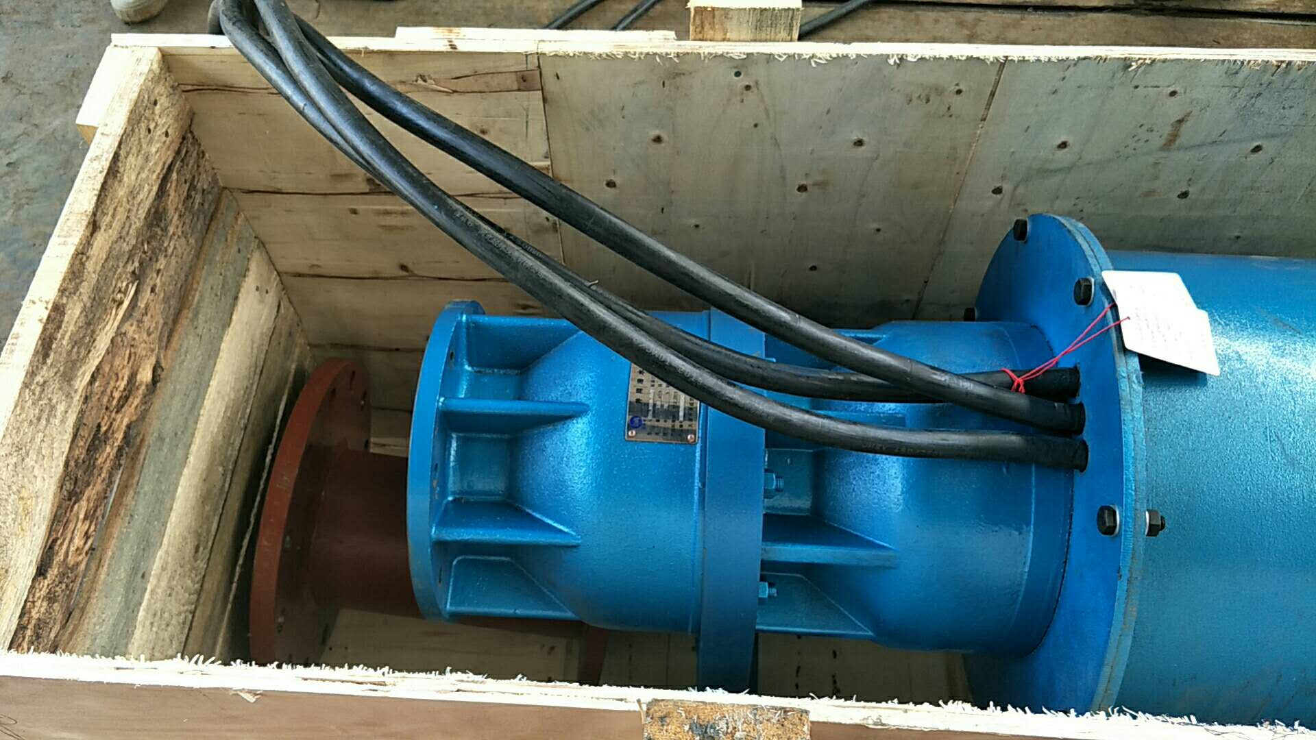 300QJW320-70-110KW卧式潜水泵发往江西第5张-潜水电机-潜水电泵-高压潜水电机-天津潜成泵业