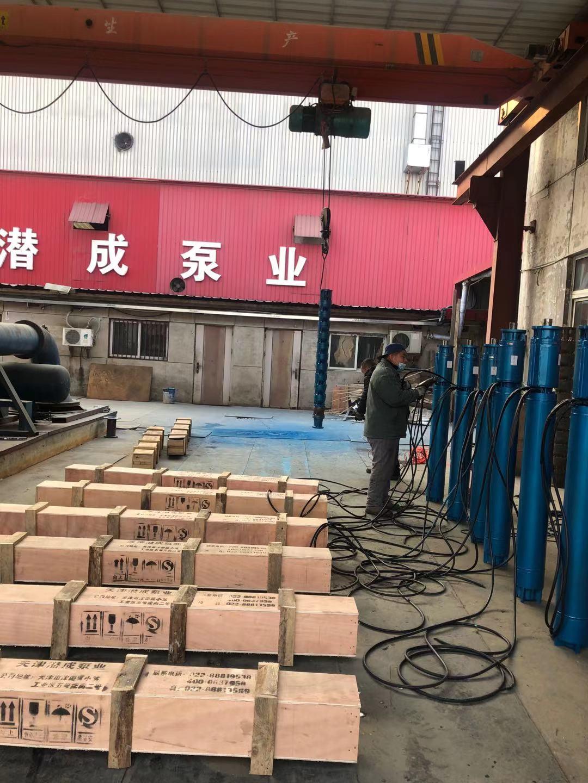 250QJR100-270-125KW耐高温热水泵发往青海第3张-潜水电机-潜水电泵-高压潜水电机-天津潜成泵业
